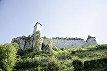 Die Burg Veldenstein in Neuhaus wurde 1468 zur Residenzburg mit ihrem heutigen Aussehen ausgebaut. Foto: Mile Cindric